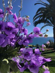 Travel- und Lifestyle Blog mit vielen Hotelreviews und Hotelbewertungen
